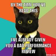 resized_business-cat-meme-generator-by-the-time-you-ve-read-this-i-ve-already-given-you-a-bad-performance-review-f87415